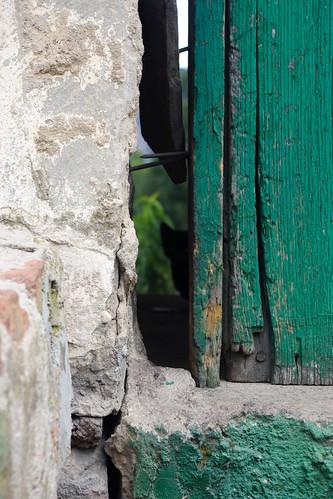 door cat puerta gato