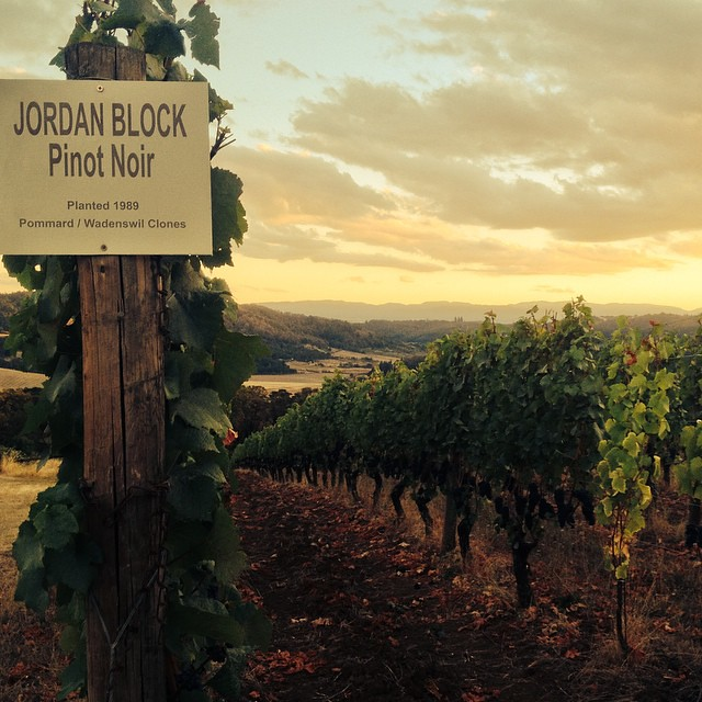 A beautiful moment in wine country.  We hope you had a chance to take a moment and enjoy yours. #orwine