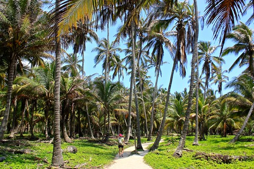 hiking between beaches in Tayrona