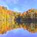 Yedigöller'de sonbahar 2 (Autumn in Seven Lakes) by Talip Çetin