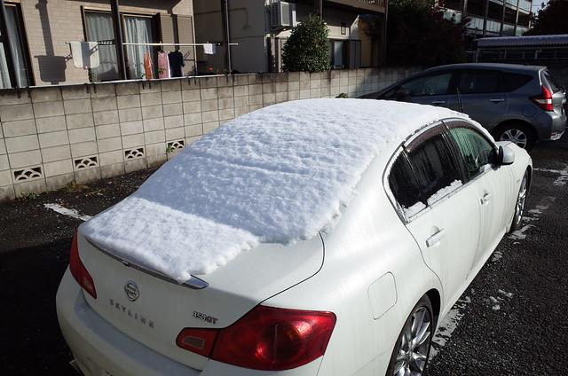 雪が降った日の翌朝