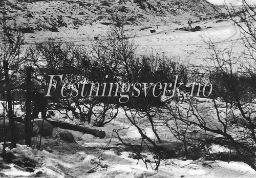 Finnmark (645)