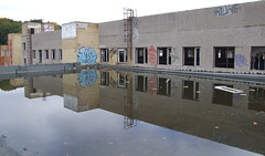 Pond on the roof, 28.09.2013.