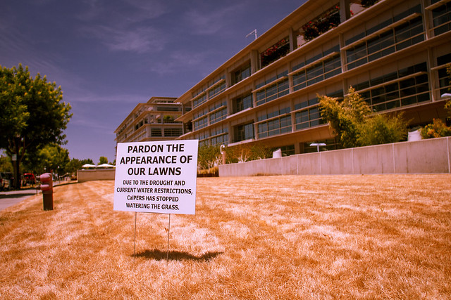 CalPERS and the Drought from Flickr via Wylio