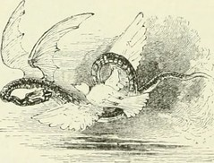 "Image from page 257 of ""Midsummer Eve : a fairy tale of loving and being loved"" (1870)"
