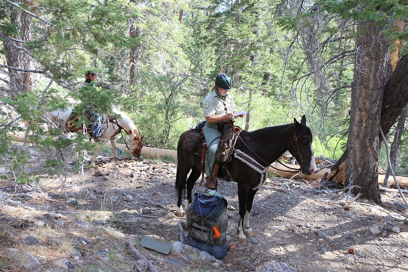 SGWA Volunteer checking my Wilderness Permit from Horseback