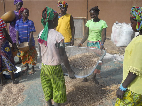 Women processing cereals in Mali