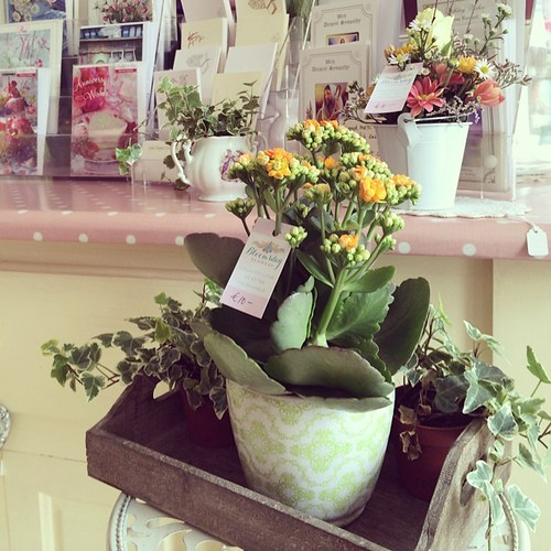 Summer is alive and well in this cute little flower shop.