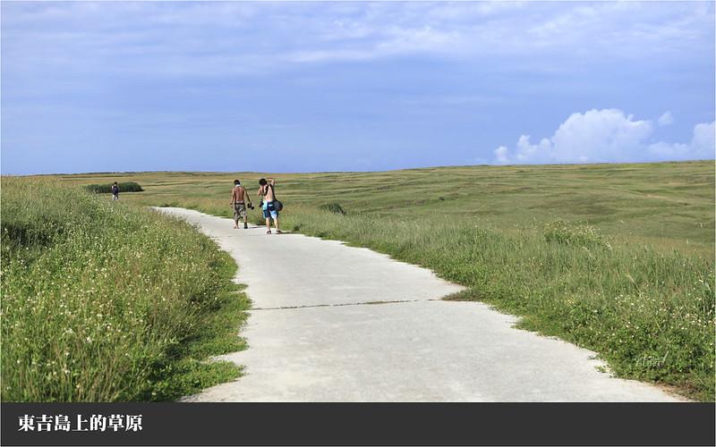 東吉島上的草原