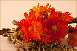 Orange Zinnias And Ornate BrassG_2336-4LL
