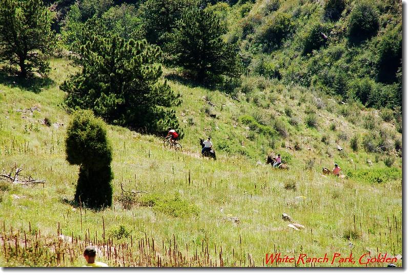 公園內也適合騎馬、越野單車運動