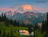 Mt Rainier Wildflower Season Starts