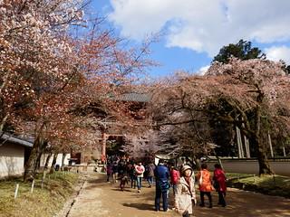 Daigo-ji Temple