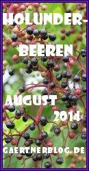 Garten-Koch-Event August 2014: Holunderbeeren [31.08.2014]