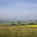 Small photo of Moring at Wittenham Clumps