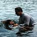 Water Baptist