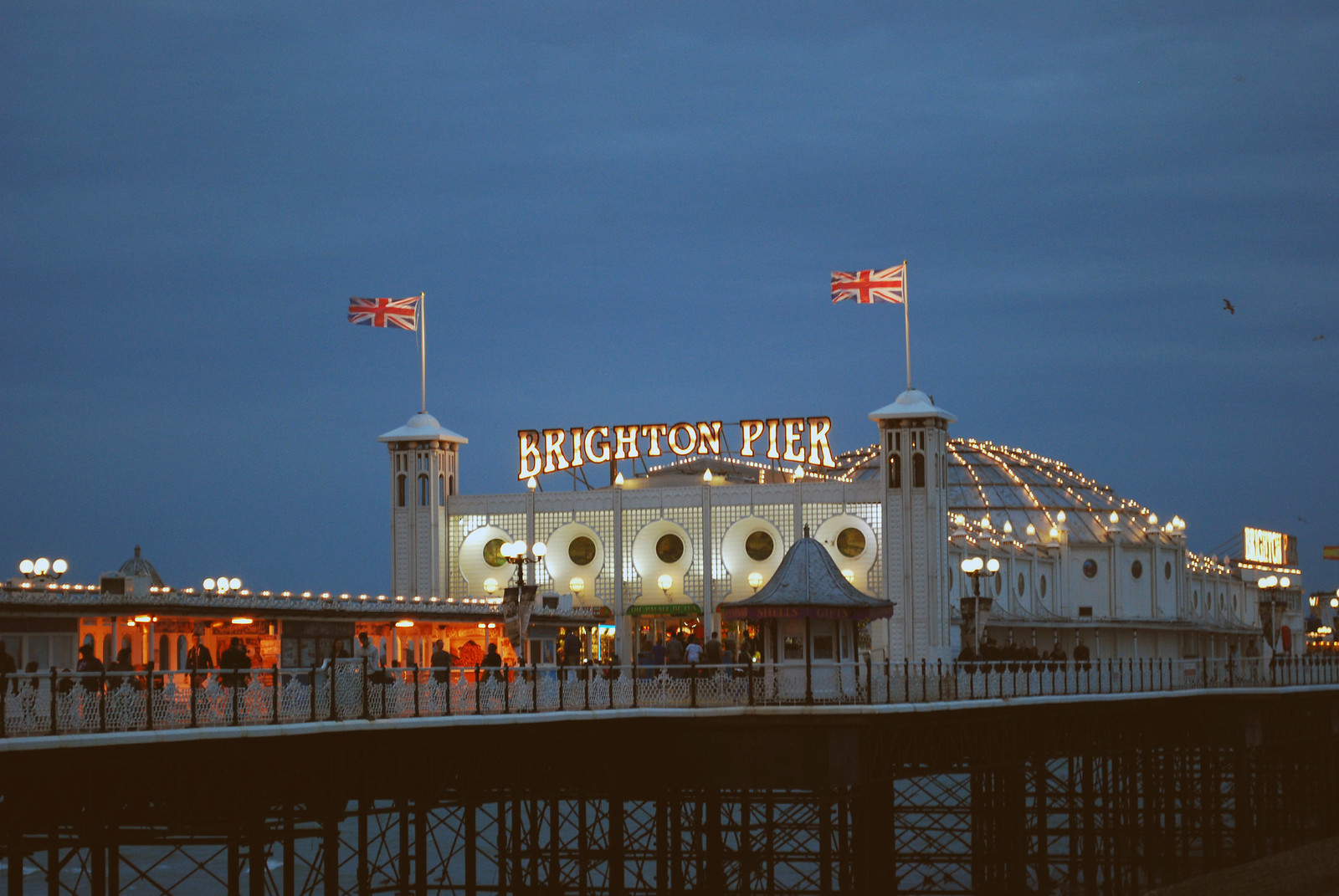 The Palace Pier at Night