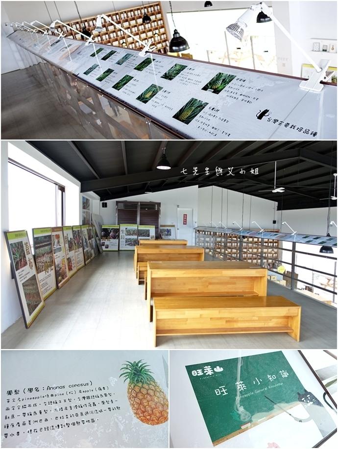 13 嘉義民雄旺萊山