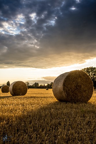 sunset landscape hay bales
