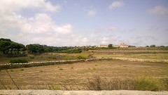 Mdina from the 202 bus