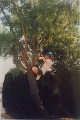 Teenager climbing a tree