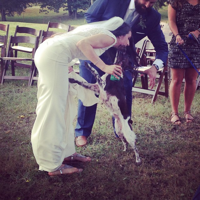 Maple gives her mom a happy wedding kiss #cheers2thechisholms