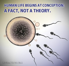 Human Life Begins at Conception