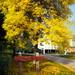 Suomi autumn