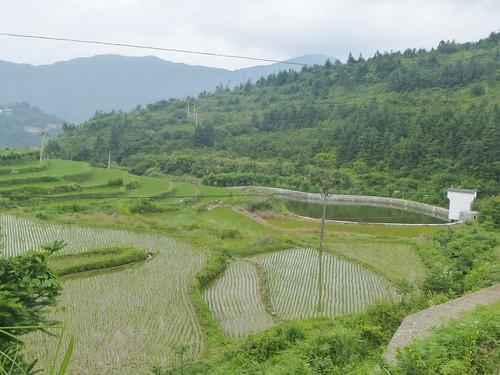 Jiangxi-Wuyuan-Montagnes et lac (47)