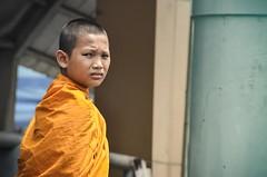 younge buddhist monk