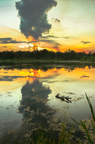 sunset red sky orange cloud lake color reflection industry nature mushroom water silhouette vertical clouds forest outdoors us pond colorful industrial unitedstates bright smoke nobody westvirginia pollution wetlands marsh powerplant goldenhour stacks plumes pointpleasant masoncounty mcclintock tntarea