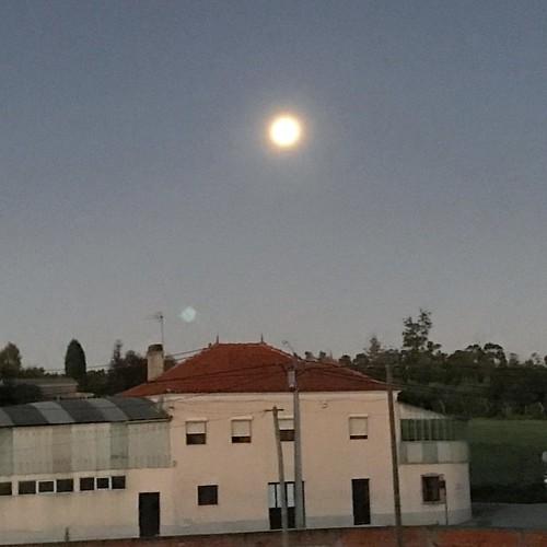 La súper luna al amanecer! #superluna #supermoon #superlua #moon #luna #lua #portugal #oliveiradobairro
