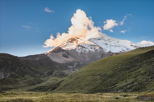 chimborazonationalpark ecuador landschap parquenacionalchimborazo apalca bluehour lama landscape sunset vulcano vulkaan