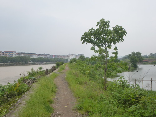 Jiangxi-Yushan (119)