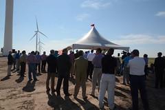 Pantex Wind Farm Complete
