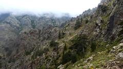 Crête Barcalinu-Cornodello : début du contournement du Cornodello, vue versant Logoniellu