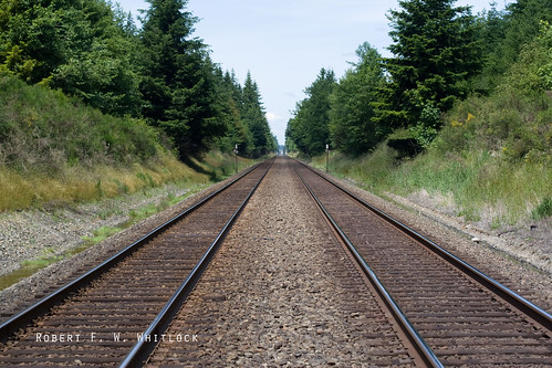 Rails of South Thurston County