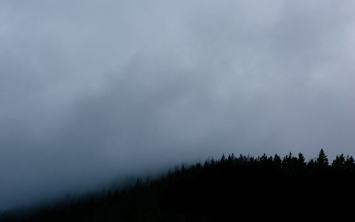 trees nature fog clouds contrast canon landscape day mysterious pacificnorthwest washingtonstate pnw canonef2470mmf28lusm issaquah canoneos5dmarkiii johnwestrock