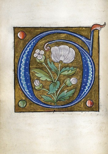 008-Leaf from Alphabet Book- The Art Walters Museum