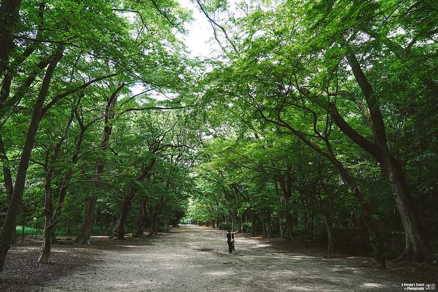 2014_Summer_SanyoArea_Japan_CH1_EP2-12