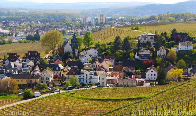 Rheingau Wine Region Germany-16
