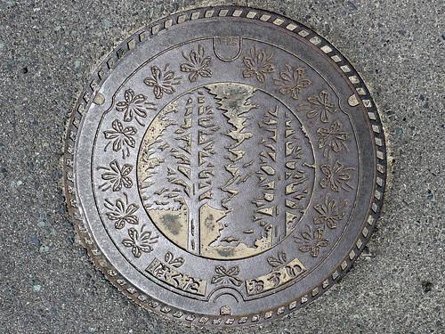 Hakuta Shimane, manhole cover (島根県伯太町のマンホール)