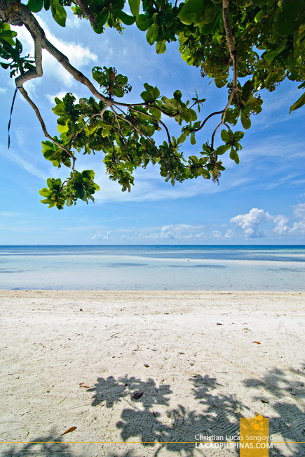 Quinale Beach in Anda, Bohol