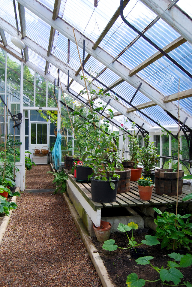 Greenhouses at Balfour Castle