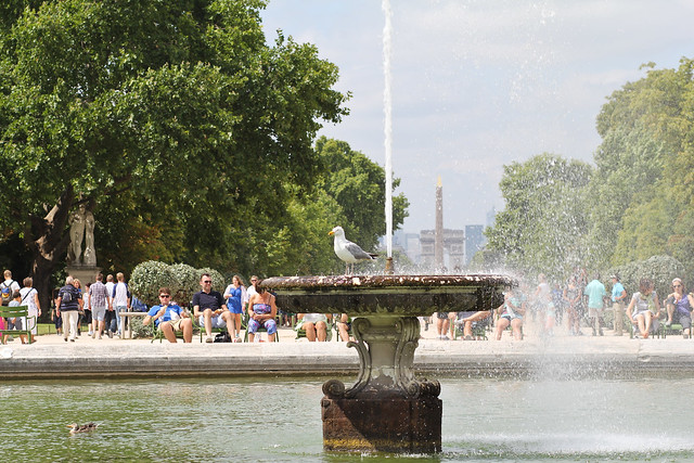 Summer in Tuileries Gardens