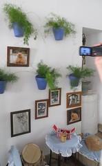 Cordoba, Spain: Patio Festival, part 12