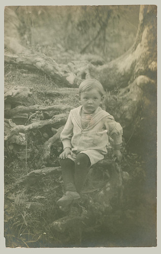 RPPC child on tree roots