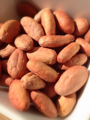 BLYSS Cacao Beans