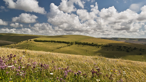 uk summer england clouds landscape nationalpark hills grassland eastsussex rolling southdowns lewes marjoram oreganum cloudsstormssunsetssunrises lewesdowns infinitexposure