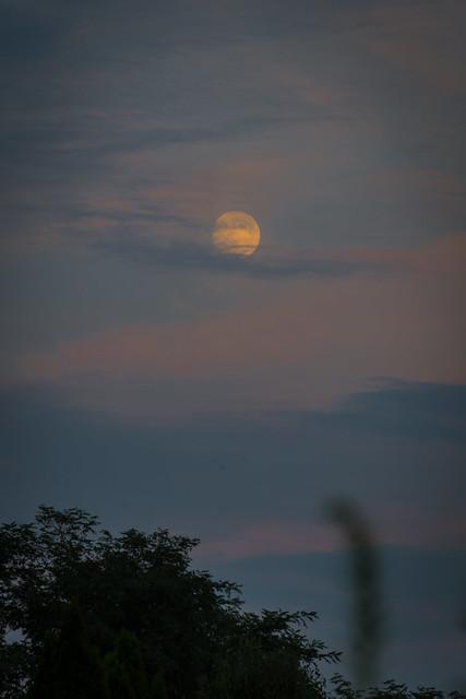 Super Moon (almost)